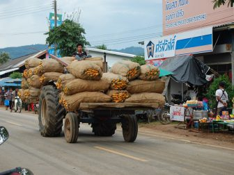 Tractor-in-Bo-Thai-loaded-with-sweetcorn